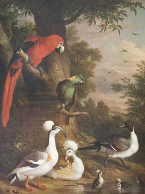 A Group of Birds in a Landscape, Oil on canvas, Jakob Bogdani, 1718