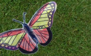 Hands on Holidays - Garden Butterflies