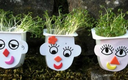 Hands on Holidays – Seed Heads